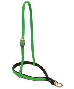 green noseband