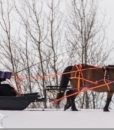 bridget snow 1