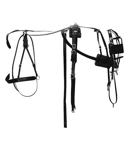 chimacum tack  horse tack  u0026 harness supplies for animals
