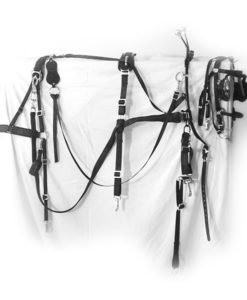 Pony Farm Harness