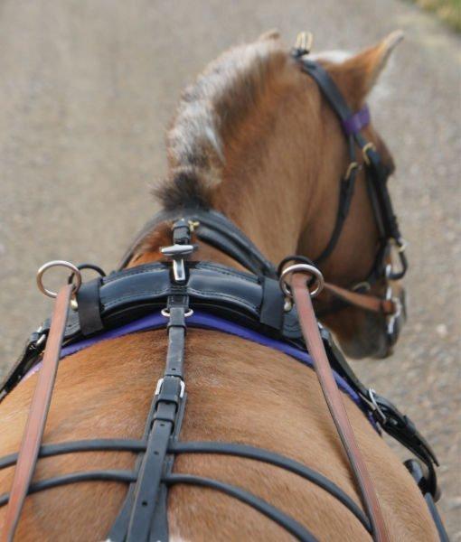 D.A Brand Black Nylon Saddle Crupper Horse Tack Equine