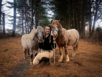 Miniature-Horses