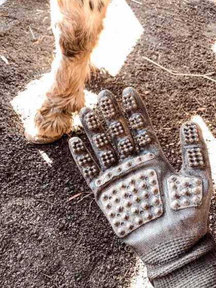 hanson gloves